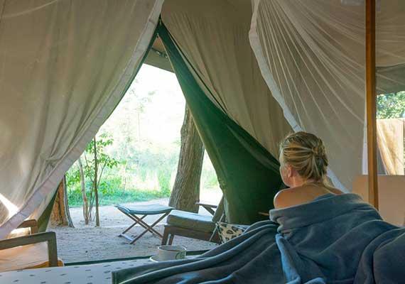 Aliya Safari Camp | Safari Camping Buttala | Aliya Safari